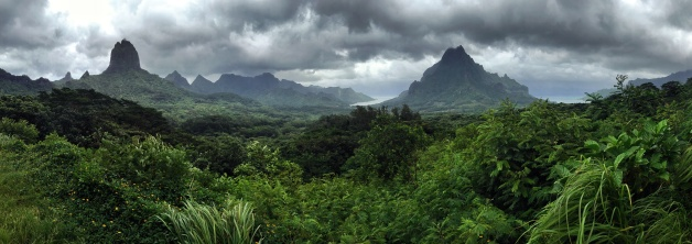 Moorea from the Belvedere
