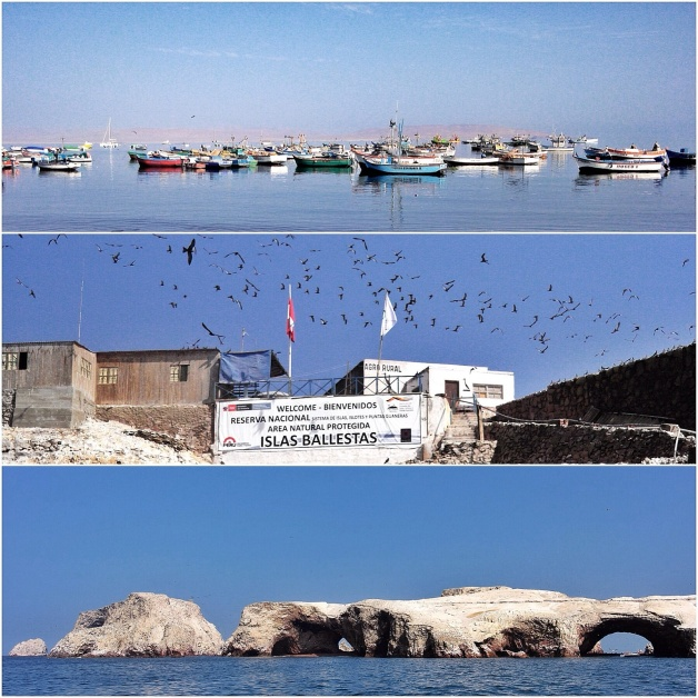 Paracas and Islas Ballestas, Peru