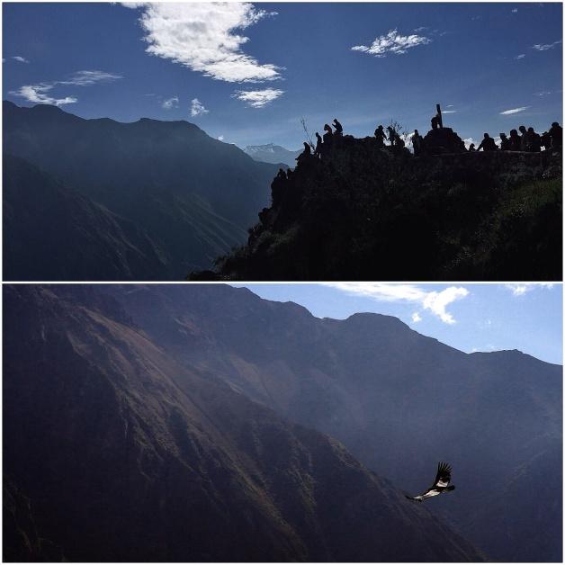 Cruz del Cóndor, Colca Canyon